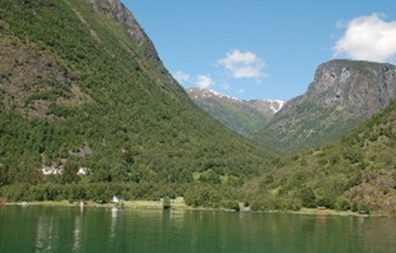 Dyrdal seen from the Nærøyfjord. Far up in the valley you may catch a glimpse of the Drægo farm as a green spot.