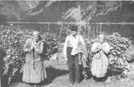 Pollarding of elms has been one of the many activities in the outlying areas of the farms in the hamlet. The man's name is Ole Hansen Gudvangen (1868-1954), the woman to the left may be Kristina Bakka, whereas the woman to the right is unknown.