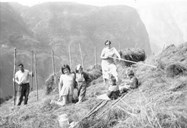 Haymaking at Nedbergo. The grownups are Sylfest Nedberge (1918-1998) and Magnhild, born 1918, married to Kristian Nedberge. The children from left to right are: Idunn, Tove, Torill and Grete.