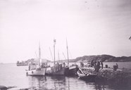 "From Færøy, 1952. The tuna fishing vessels are at the breakwater, getting ready. Closest to the breakwater is the ""Nordsolund"", 56 feet long, with the seine in front of the wheelhouse. After the great catch in 1950, Bjarne Færøy finished that season with 1462 tuna.<br /> Ship-owners Br. V. Færøy operated two tuna seines, therefore the ""Stridsholm"" (middle) had been rented. Farthest from the breakwater is another of Br. V. Færøy's vessels, the ""Hugnad"", better known as the ""Døysen"", because she originally had a German diesel engine. This boat served as an auxiliary of the ""Nordsolund""."