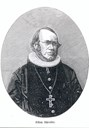 Missionary bishop Schreuder. Xylography after a photo to be used for printing.