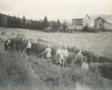 Haymaking at the mountain farm with holiday guests from 'the city'. Both houses can be seen in the background.